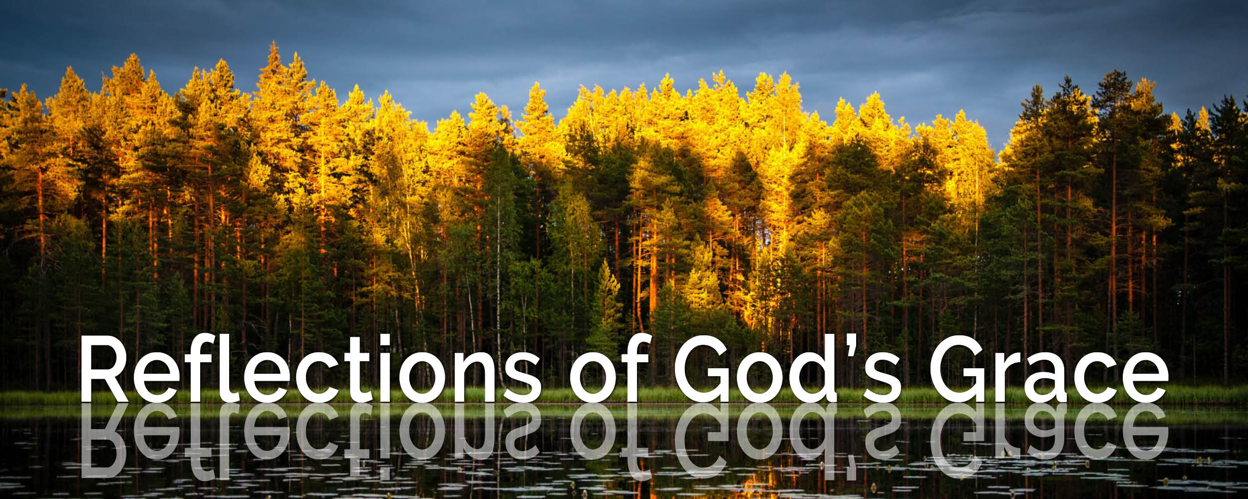 Reflections of God's Grace - Week 3